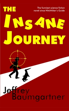 Cover of The Insane Journey by Jeffrey Baumgartner